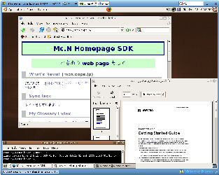 VMware Player 1.0.0 + Browser Appliance Virtual Machine (BAVM)